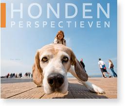 Hondenperspectieven